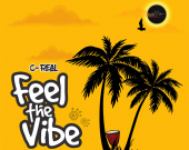 Feel The Vibe - C-REAL