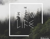 The New Life - 3one6 (Digital Album)