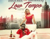 Low Tempo - Shatta Wale ft. Shatta Michy