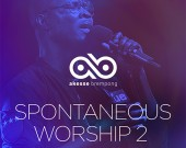 Spontaneous Worship 2 - Akesse Brempong