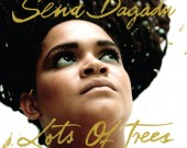 Every Blessed Thing - Sena Dagadu