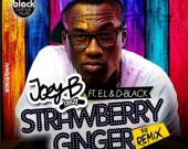 Strawberry Ginger (Remix) - Joey B ft D Black & E.L
