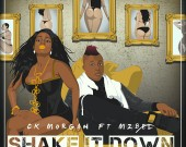 Shake It Down - CK Morgan ft Mzbel