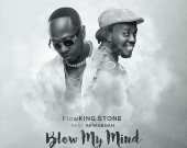 Blow My Mind - Flowking Stone ft Akwaboah