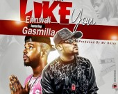 Like You - Ennwai ft Gasmilla