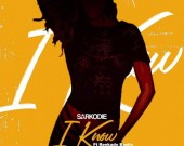 I Know - Sarkodie ft Reekado Banks