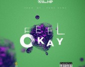Feel Okay - Quamina MP