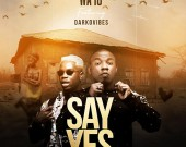 Say Yes - Wayo ft Darkovibes