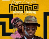 Mobile Money(MoMo) - Novo ft Kofi Mole