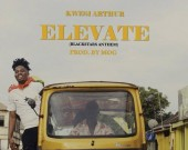 Elevate (Black Stars Anthem) - Kwesi Arthur