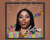 Too Late - Adina